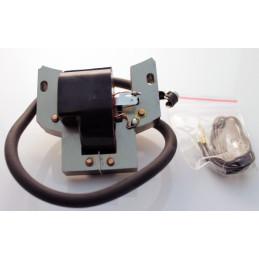 Vergaser 11271200650 (HD-19A)
