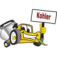 Shingu